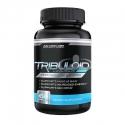 Tribuloid - Sản phẩm hỗ trợ tăng cơ dành cho nam giới
