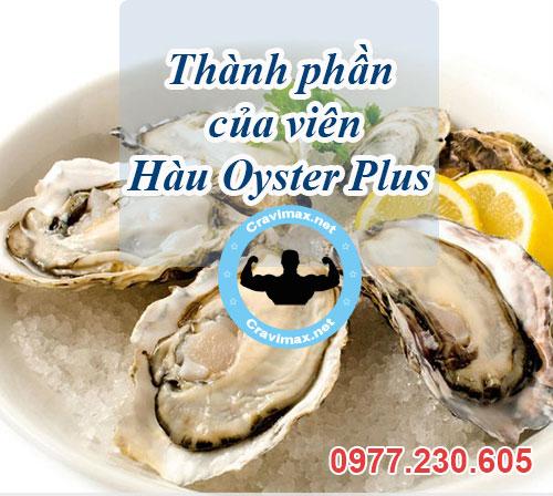 thành phần oyster plus